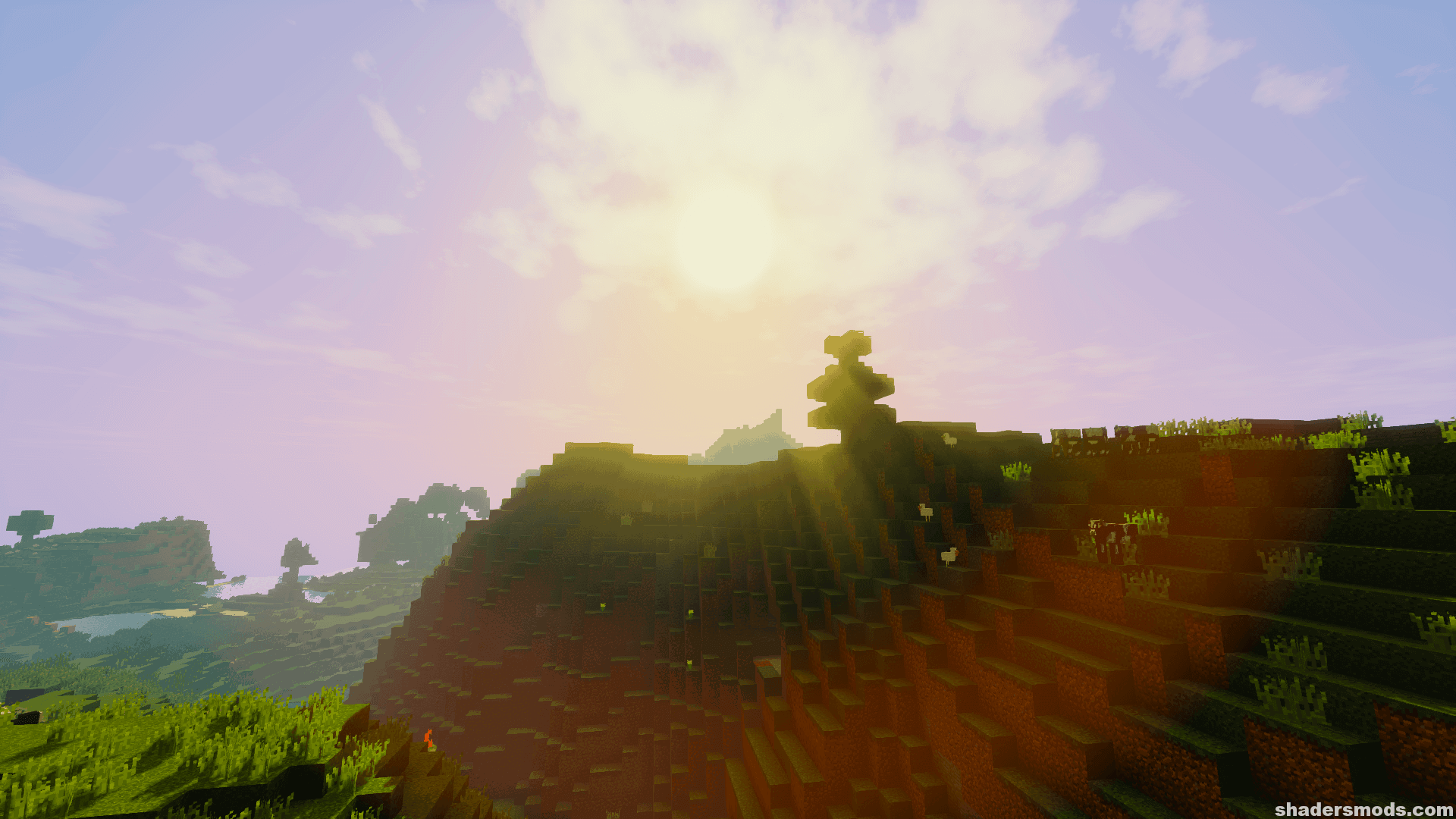 RRe36's Shaders Mod